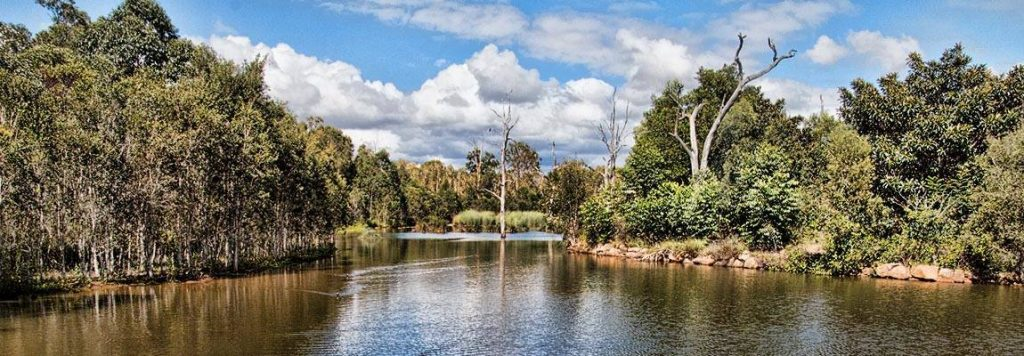 Black Duck Lagoon