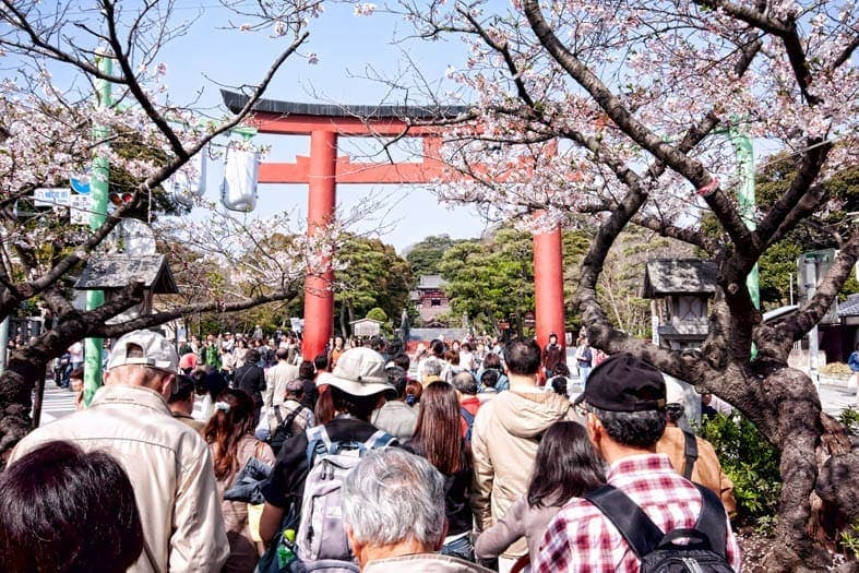 Hachimangu approach
