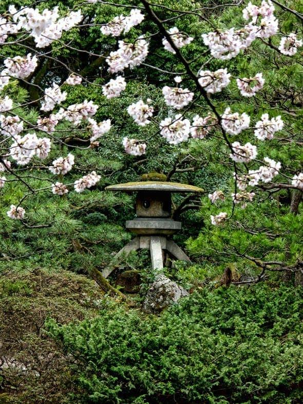 Oyama Jinja