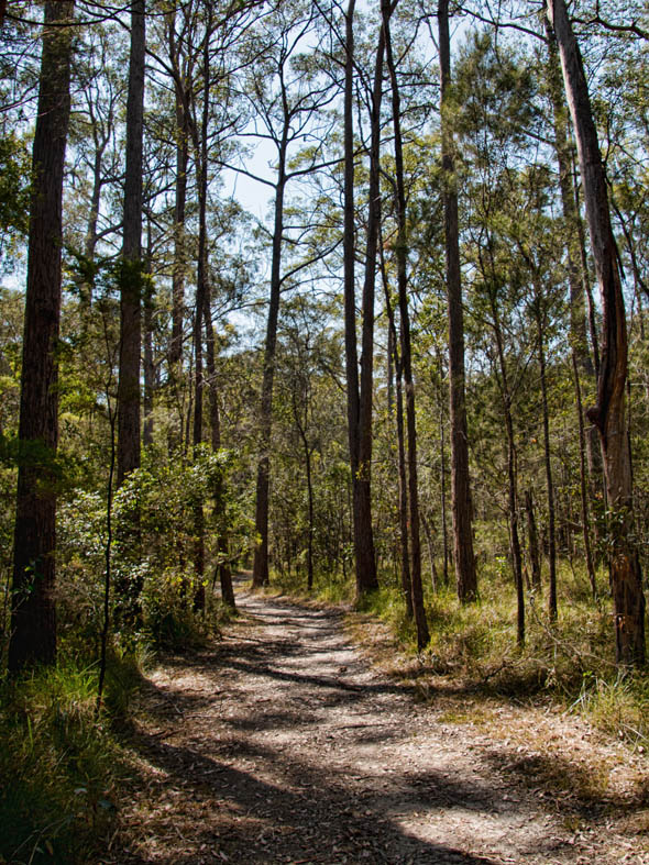 Venman Bushland National Park