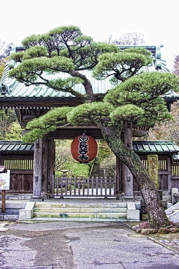 Hasedera Temple Gate