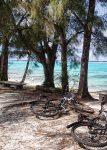 Cycles in Rarotonga