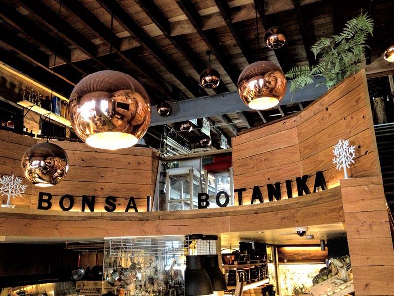 Bonsai Botanika