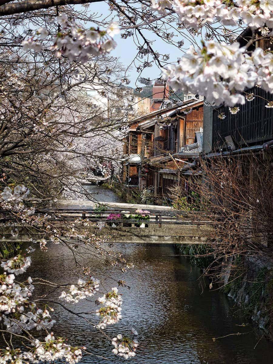 Shirakawa Canal