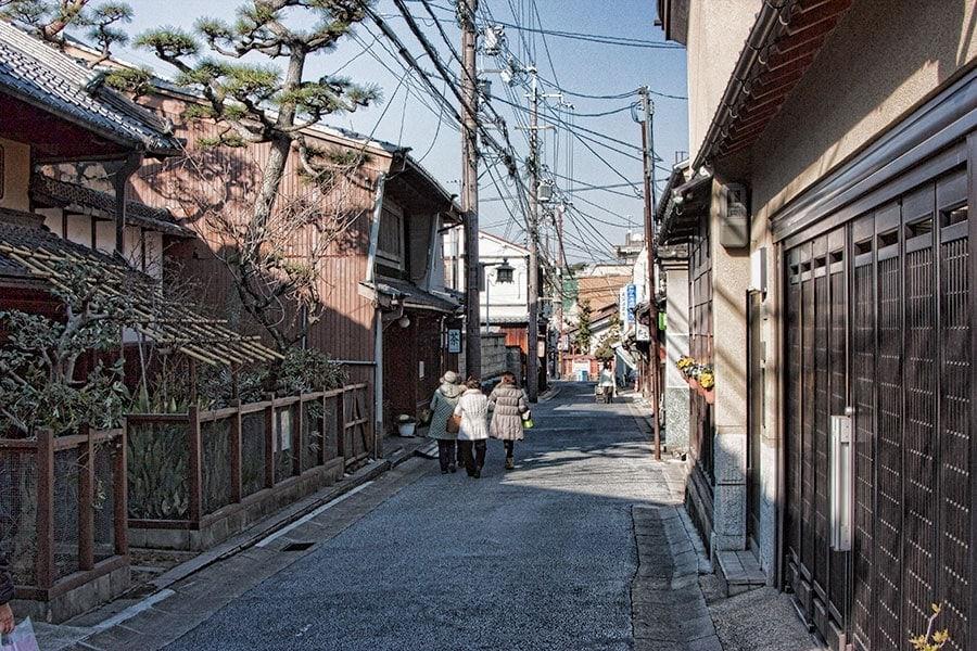 Wandering in Nara