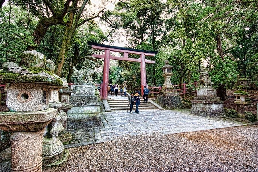 Nara walkabout