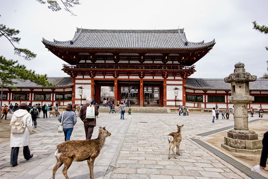 Todai-ji in Nara