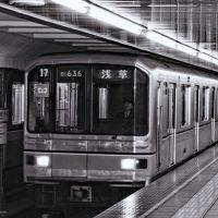 Mastering the Tokyo Subway