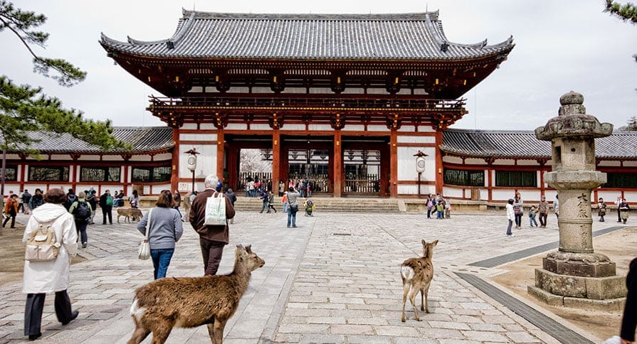 Kadewe additionally Why I Love Nara moreover Wine List Reveals in addition Top 10 Things To Do In Alpine together with Kroger Freebie Week Daily From January 13 January 19. on list food