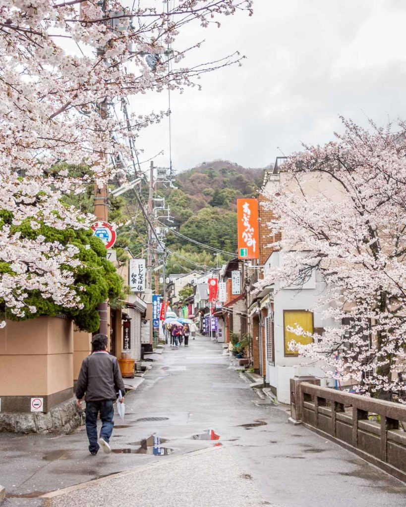 Shopping street in cherry blossom leading to the Silver Pavilion