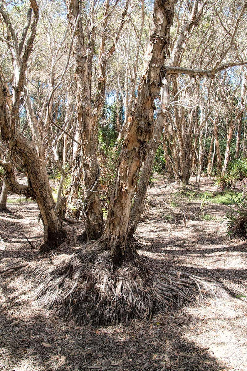 Arkarra Lagoons | 2 Aussie Travellers