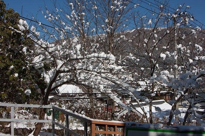 Snow along the Tozen Line