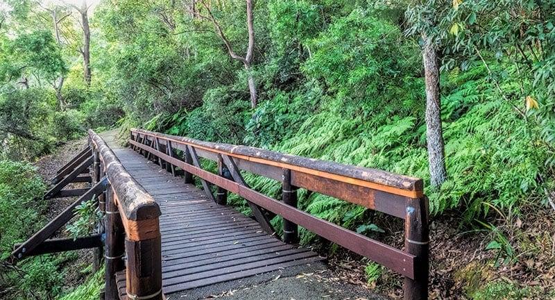 Tallebudgera Conservation Park Walk | 2 Aussie Travellers