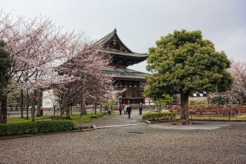 Best temples in Kyoto - Toji