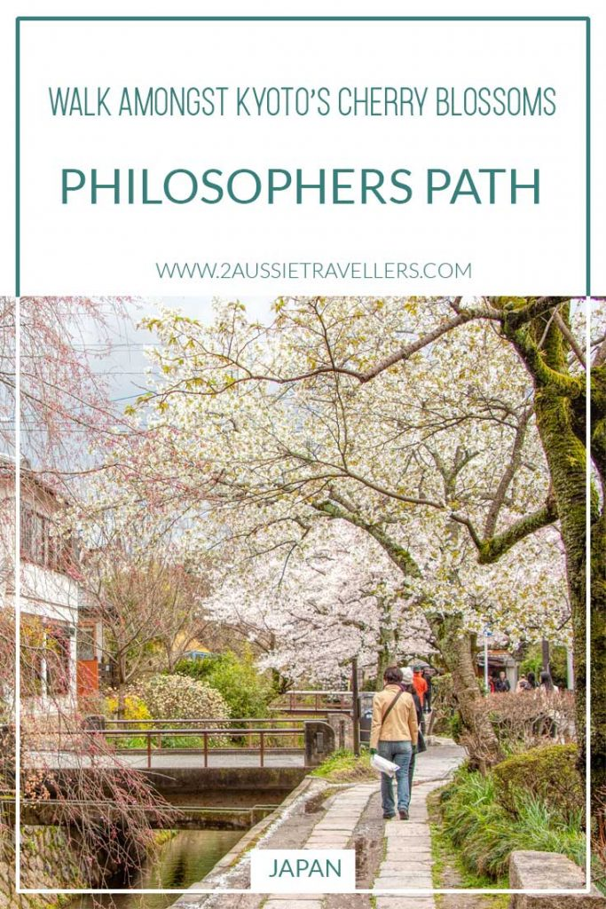 The Philosophers Path in Kyoto, Japan with cherry blossom in spring