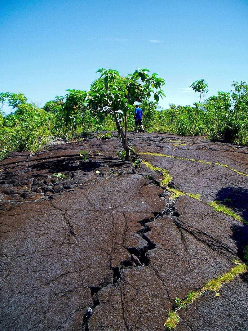 Samoa's Saleaula lava fields