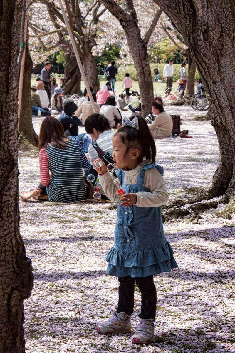 Korakuen-garden-in-okayama