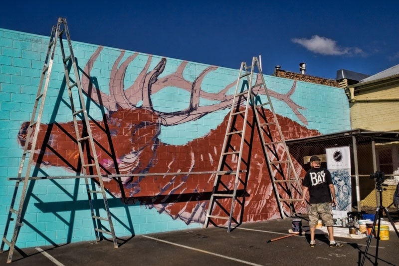 Designs underway at Toowoomba street art festival - Firstcoat