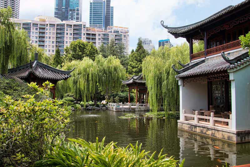 Pond at Chinese Friendship Gardens in Sydney
