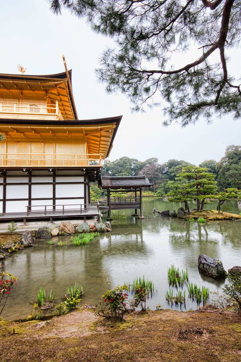Plan your visit to Kinkaku-ji, the Golden Paviliion Temple in Kyoto