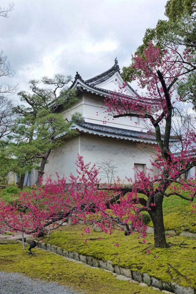The seasons are a feature in Nijo castle in Kyoto