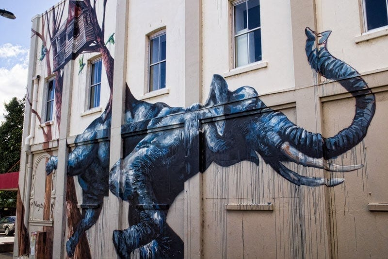 Toowoomba Street Art - Fintan Magee