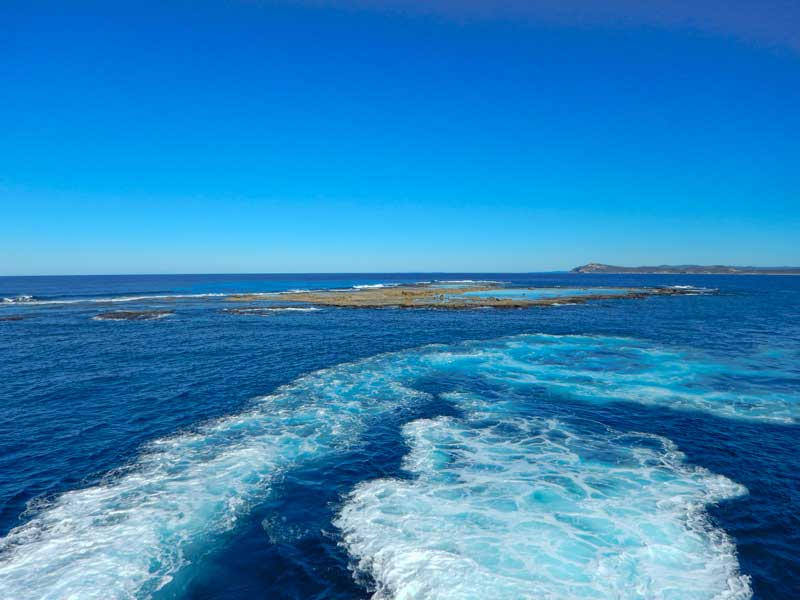 Flinders Reef off Morton Island, Queensland