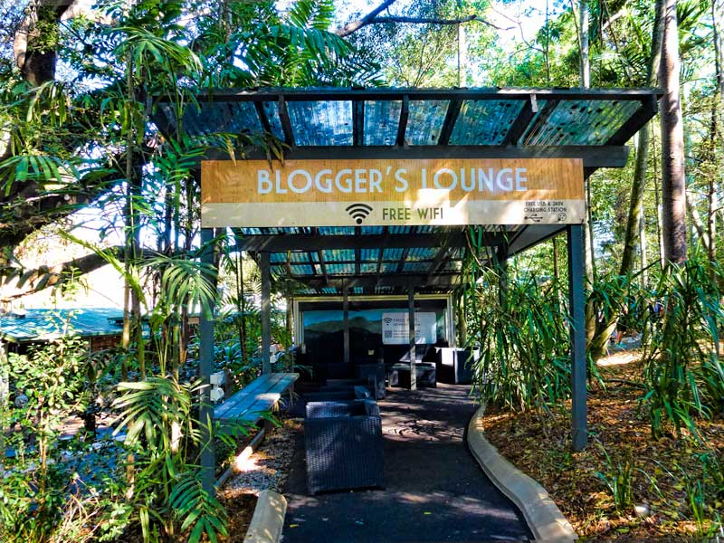 Bloggers lounge Lone Pine Koala Sanctuary