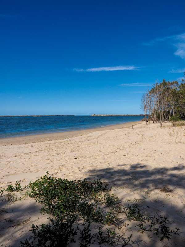 Hickey Island in Yamba