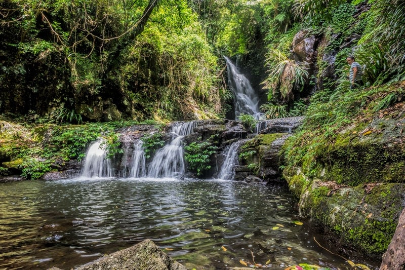 Elabana Falls from O'Reillys Rainforest Retreat