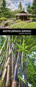 A visitors guide to Nerima Japanese Gardens in Ipswich, Australia