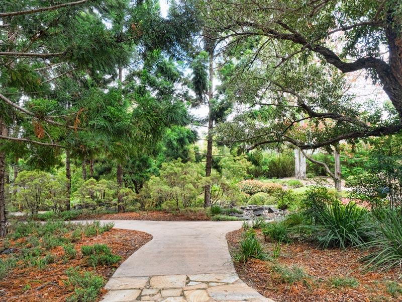 Winding paths through the Nerima Japanese gardens in Ipswich