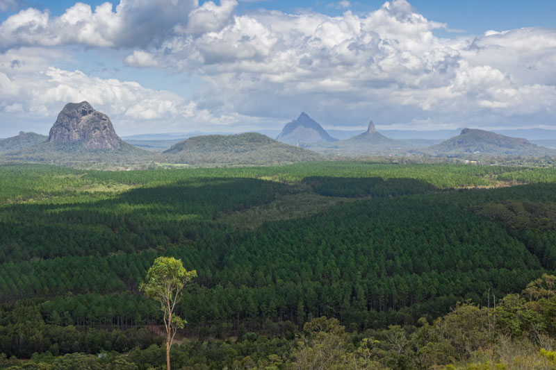 Wild Horse Mountain - Glasshouse Mountains