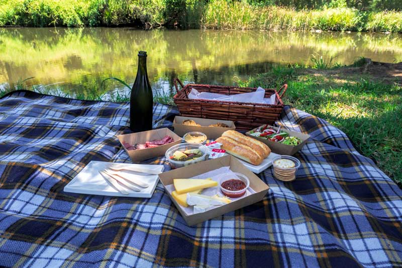 Canungra Valley Vineyards picnic