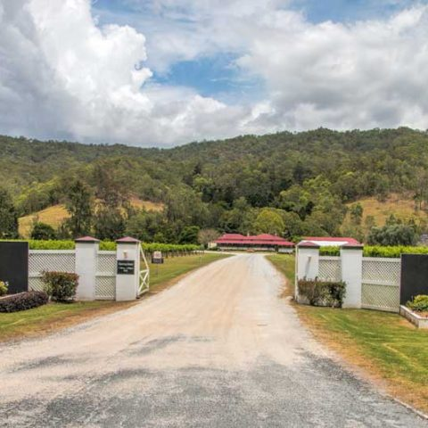 The O'Reillys Canungra Valley Vineyards