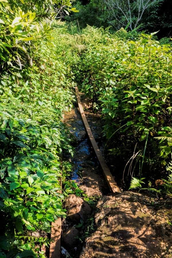 Moran falls shortcut