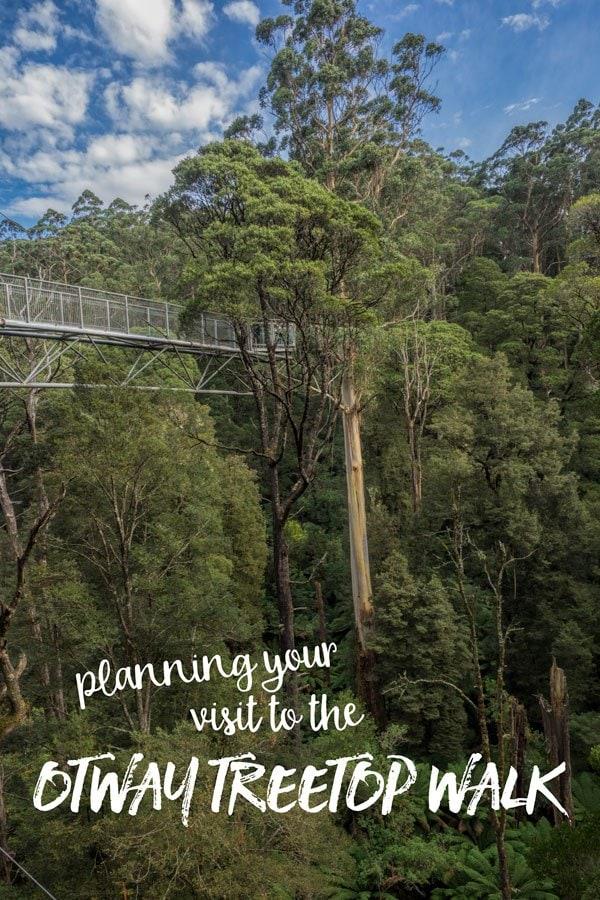 Otway Treetop Walkway, Victoria, Australia