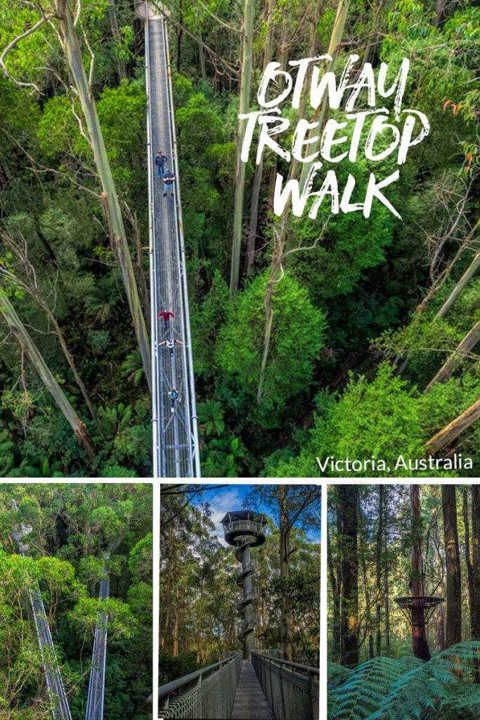 Otway Treetop Walk - Victoria, Australia