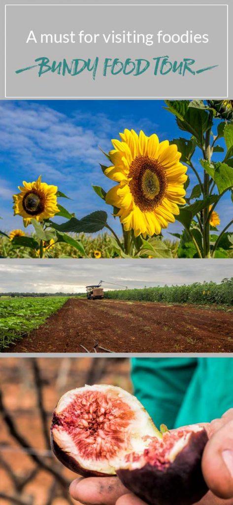 Bundy Food Tour - meet the farmers & taste the produce