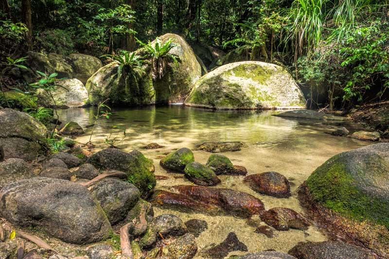 Mossman gorge swimming hole