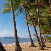 Your guide to Palm Cove and Far North Queensland