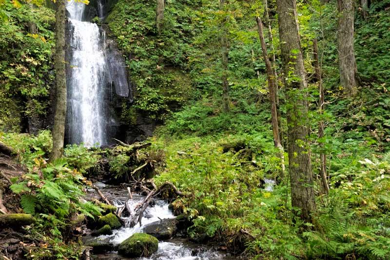 Things to do in Aomori - Oirase Gorge