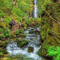 Waterfalls in Aomori