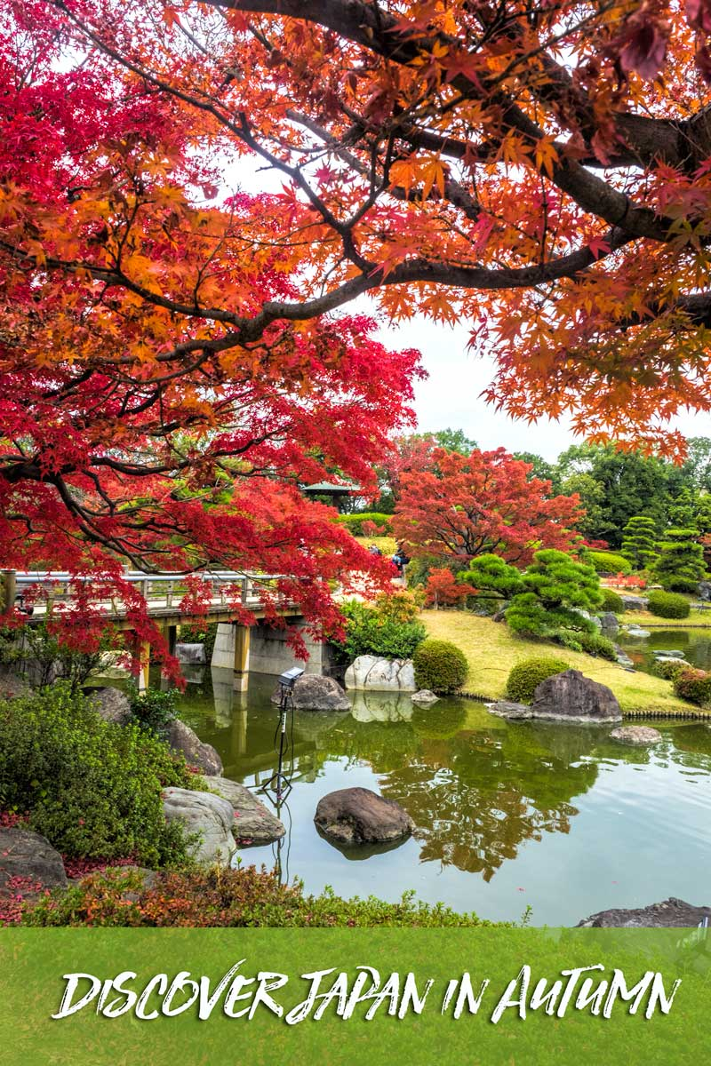 Discover the beauty of Japan in autumn along the Golden Route.  #Japan #Osaka #Kyoto #Tokyo