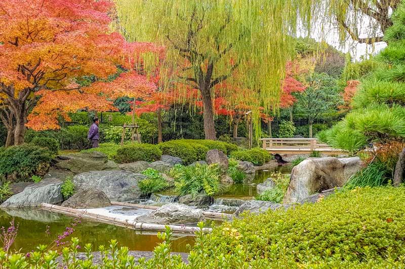 Autumn in Japan - Sakai garden Osaka