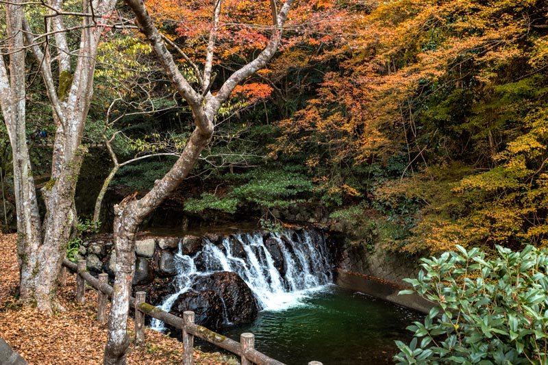 Things to do in Osaka - Minoo Park