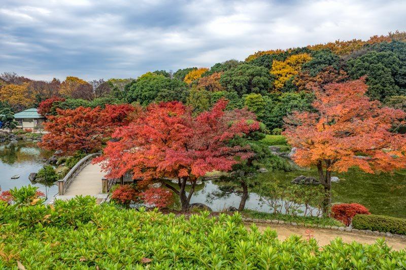 Sakai Japanese Garden in Osaka