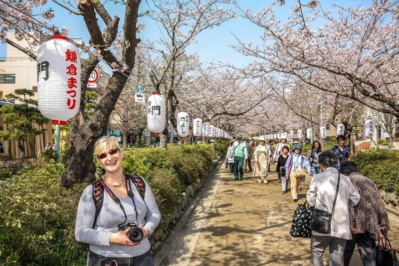 Dakazura in Kamakura