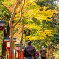 Visitors walk up the main path on Mt Takao during autumn leaves