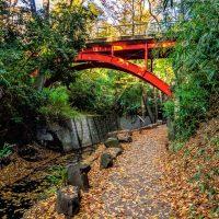Red bridge above Todoroki Gorge in Tokyo